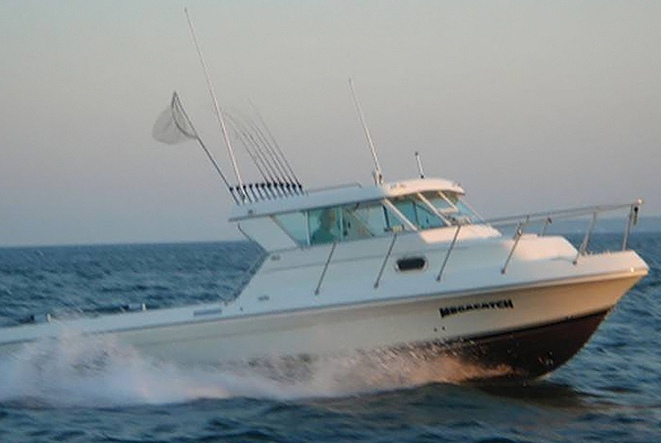 Put-in-Bay Captain Park's Lake Erie Fishing Charters