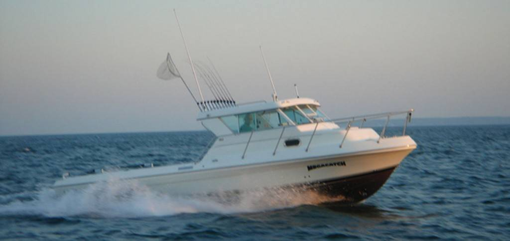 Captain park 39 s lake erie fishing charters service put in for Lake erie fishing charters