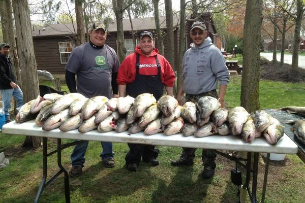 Walleye Fishing Put-in-Bay