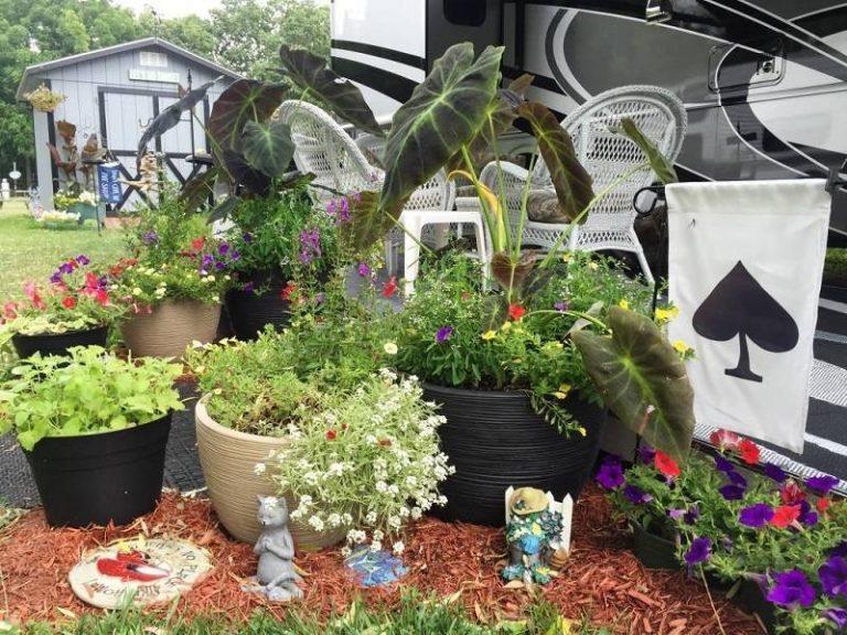 Put-in-Bay garden club