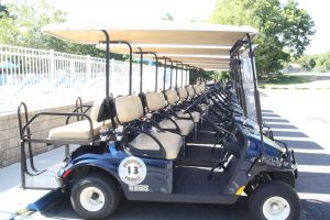 Condo Golf Carts Things To Do