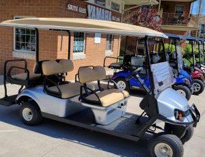 Put in Bay Golf Cart Center